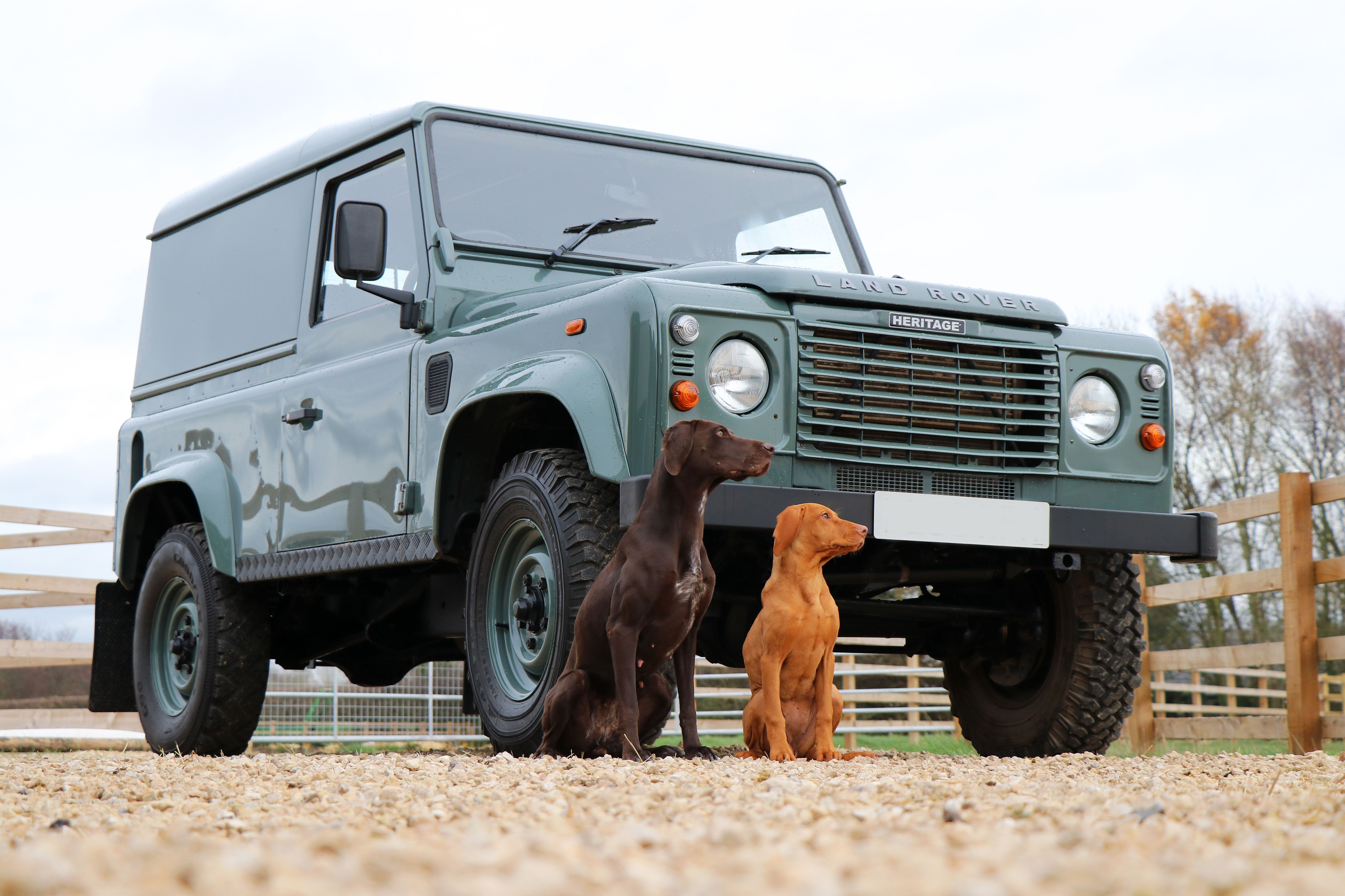 Seeker Defender Heritage Edition in Keswick Green